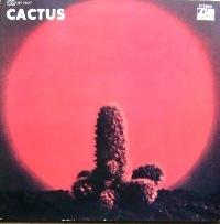 20100106cactus