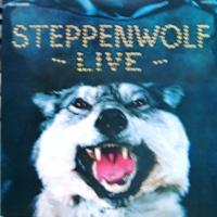 20140131steppenwolflive